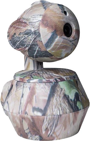 Blind Spot 360 Camera